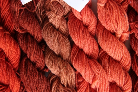Dyeing with madder: Results from recipe 1