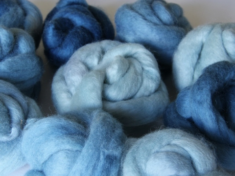 Finnsheep top dyed with home-grown woad