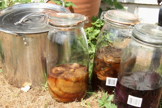 I love solar dyeing, just chuck stuff into a jar and leave them until you are ready to continue with the process. In this case I have pre-boiled the plant material though, as I find that decomposing plant bits can stick to unspun wool easily if you leave it for too long (as I often do).