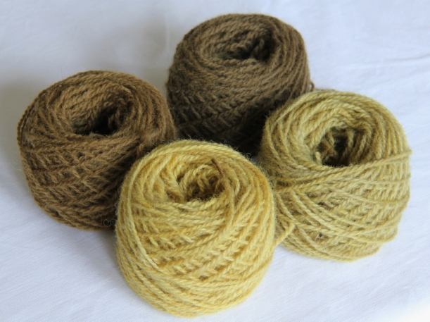 Wool yarn dyed with Alchemilla mollis. Clockwise from left: copper, copper+iron, alum+iron, alum.