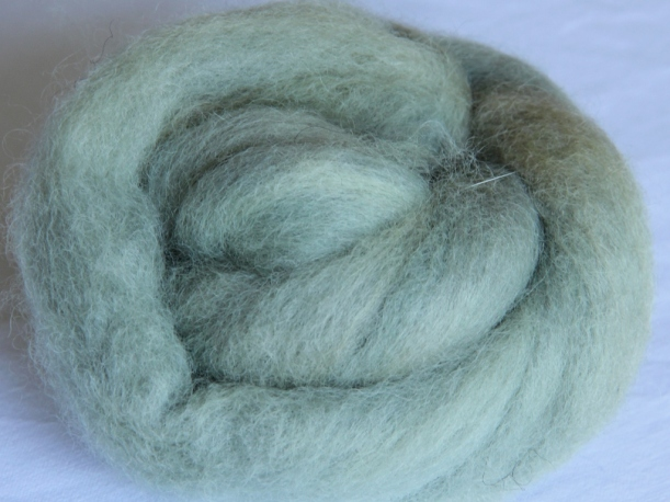 Alum mordanted Finnsheep top dyed with purple basil